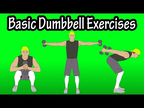 basic-beginner-introductory-easy-dumbbell-workout-exercises-for-beginners-at-home-at-the-gym