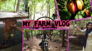 MY FARM VLOG
