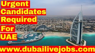 [Urgent] Candidates Required for Jobs in UAE || Jobs in Dubai