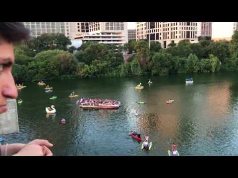 Austin TX S. Congress Bridge Bats#2 July 22nd, 2017