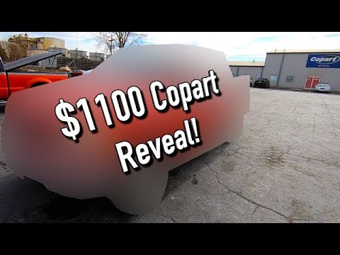 Copart $1100 Win Reveal!! Another One!!! #Copart #Salvage #Auction