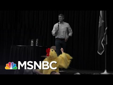 Man In A Chicken Suit Among Voters At Rowdy Jeff Flake Town Hall | The 11th Hour | MSNBC
