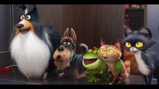 Short animation movies in Hindi-The secret life of pets 2