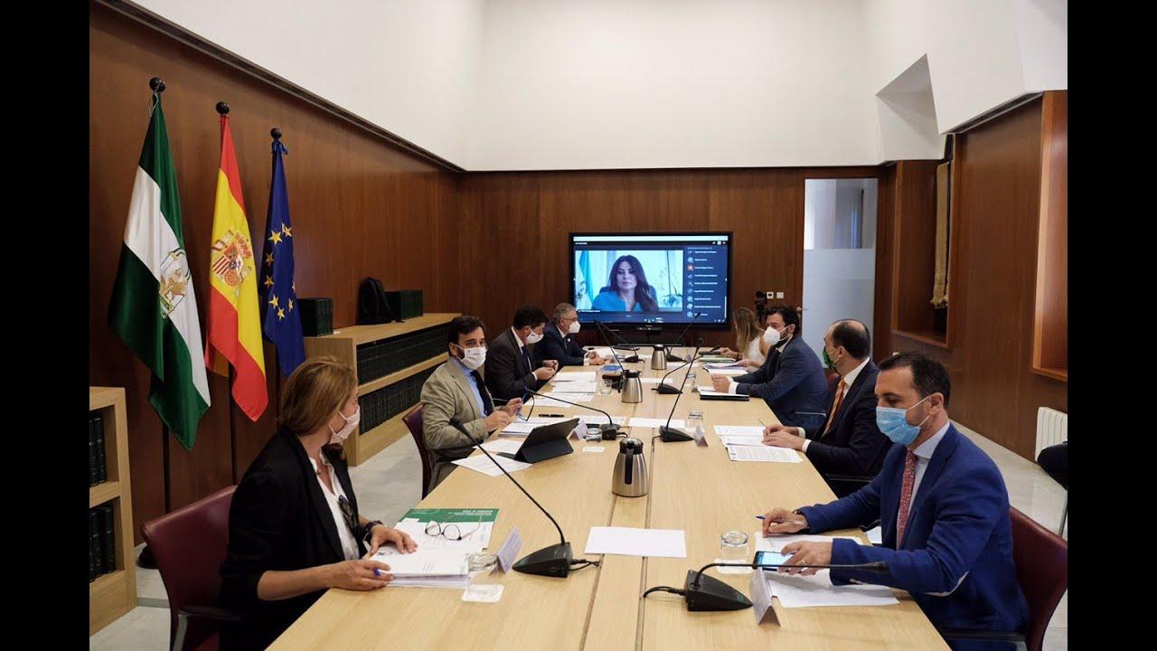 Reunión del Consejo Andaluz de Turismo tras el estado de alarma. 29-06-20