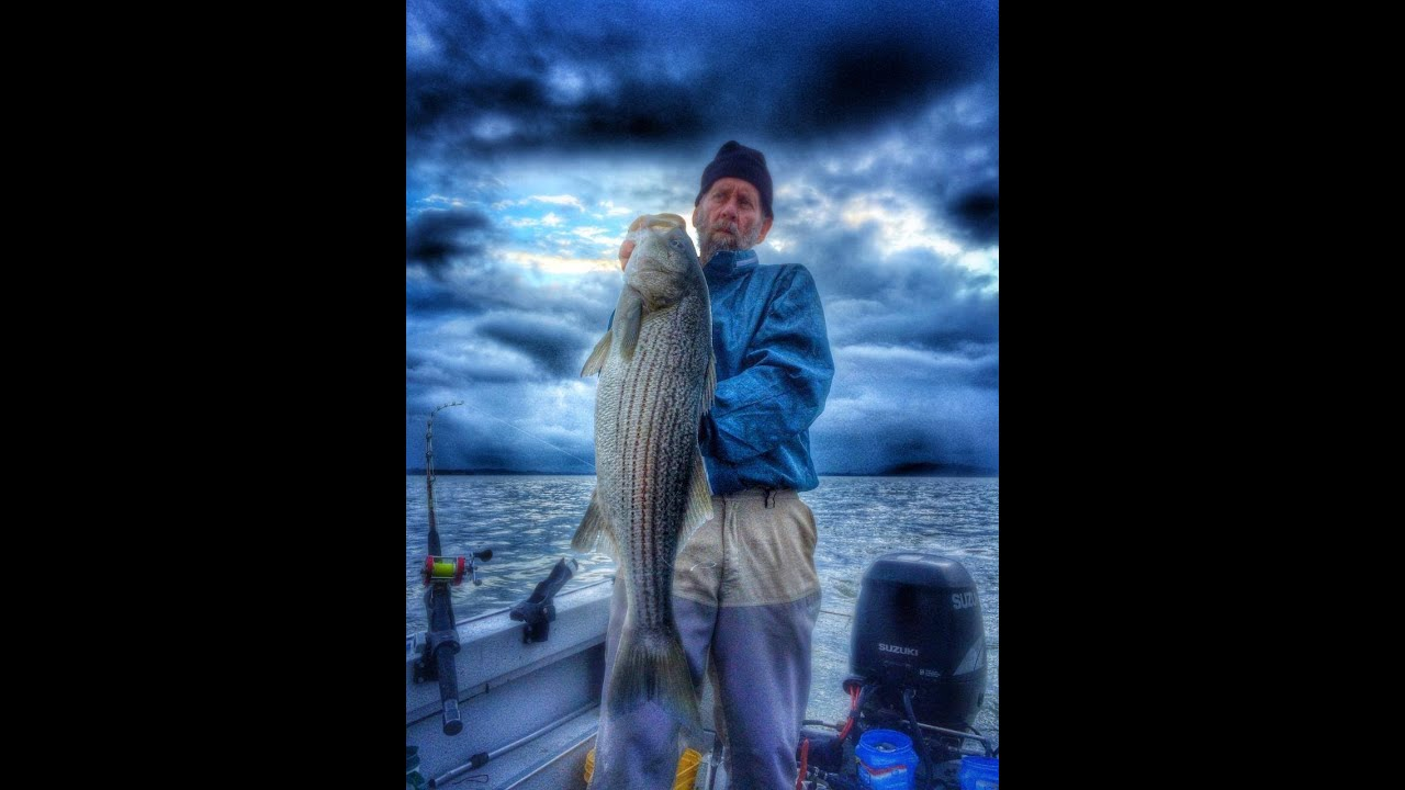 Best striped bass fishing in california youtube for Best fishing in california