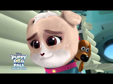 Bob S Birthday Wish Puppy Dog Pals Disney Channel Africa Youtube