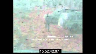 Marikana: Annexure V1 5   NW WC Camera Exhibit CC22