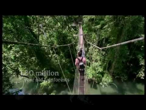 Fascinating Malaysia Tourism Video