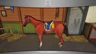 видео Игра Riding Academy 2 (Игра Академия конного спорта) - скачать бесплатно, коды, прохождение и обзор игры