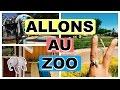 WEEKLY VLOG - Je suis au zoo de Granby!  - 19 au 23 juin