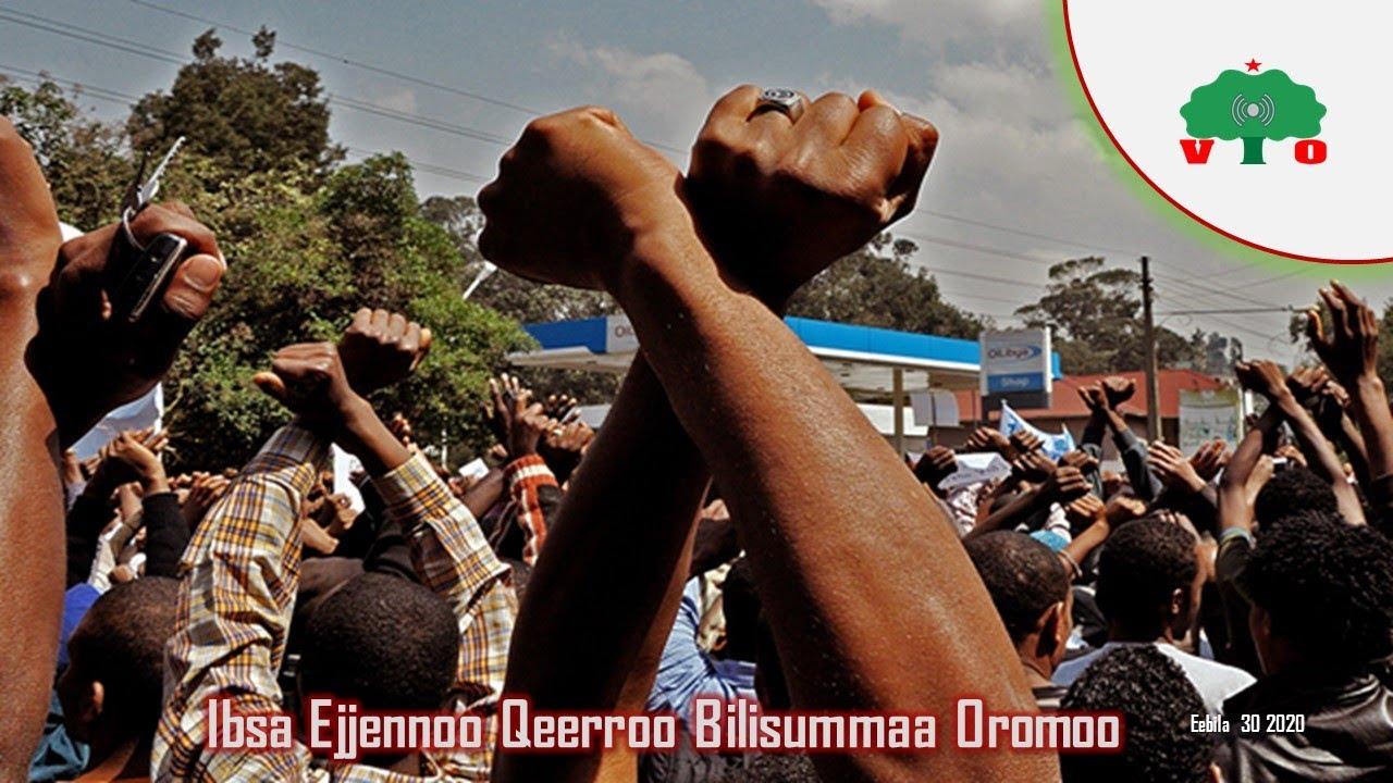 Ibsa Ejjennoo fi Dinnina Qeerroo Bilisummaa Oromoo irraa Kenname