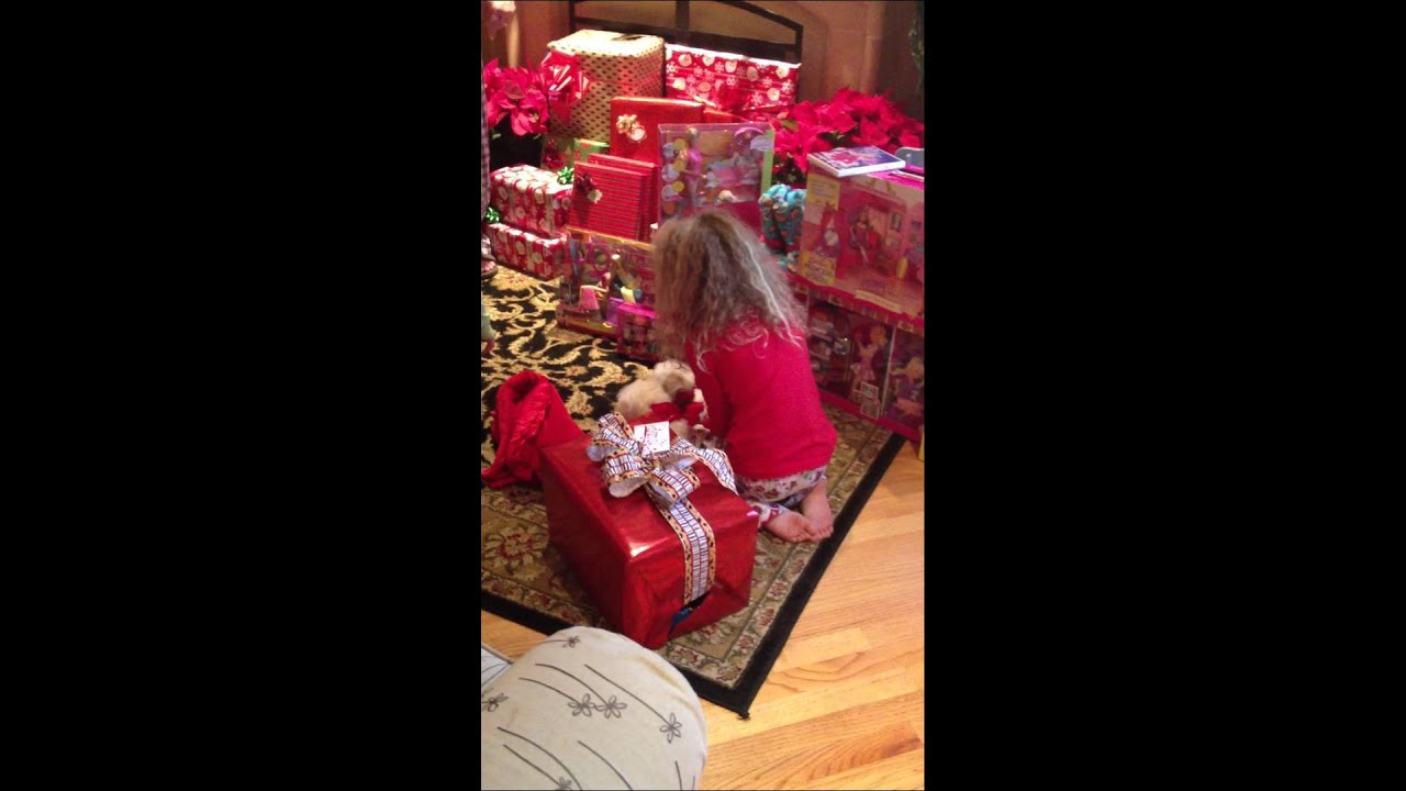 Sydney and Riley getting their puppies for Christmas - YouTube