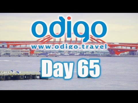 Hyogo Vlog: Exploring Kobe City [Ft. Rachel and Jun, Moe Style & OkanoTV]