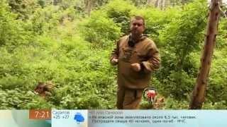 Как правильно свалить дерево(Академия выживаниЯ http://survival-academy.ru/, http://vk.com/survival_academy группа В контакте. http://www.facebook.com/groups/survival.academy.ru/ ..., 2013-06-24T11:28:25.000Z)