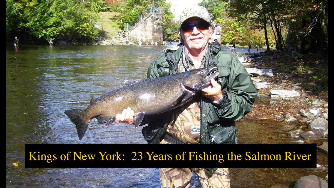 Kings of new york 23 years of fishing the salmon river for New york out of state fishing license