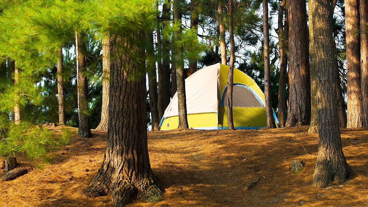 How To Pick A Campsite Camping Youtube