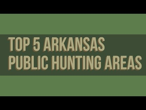 Top 5 Arkansas Public Hunting Areas