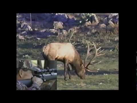 Elk Hunting On The White Mountain Apache Reservation - Ron McKim - MossBack