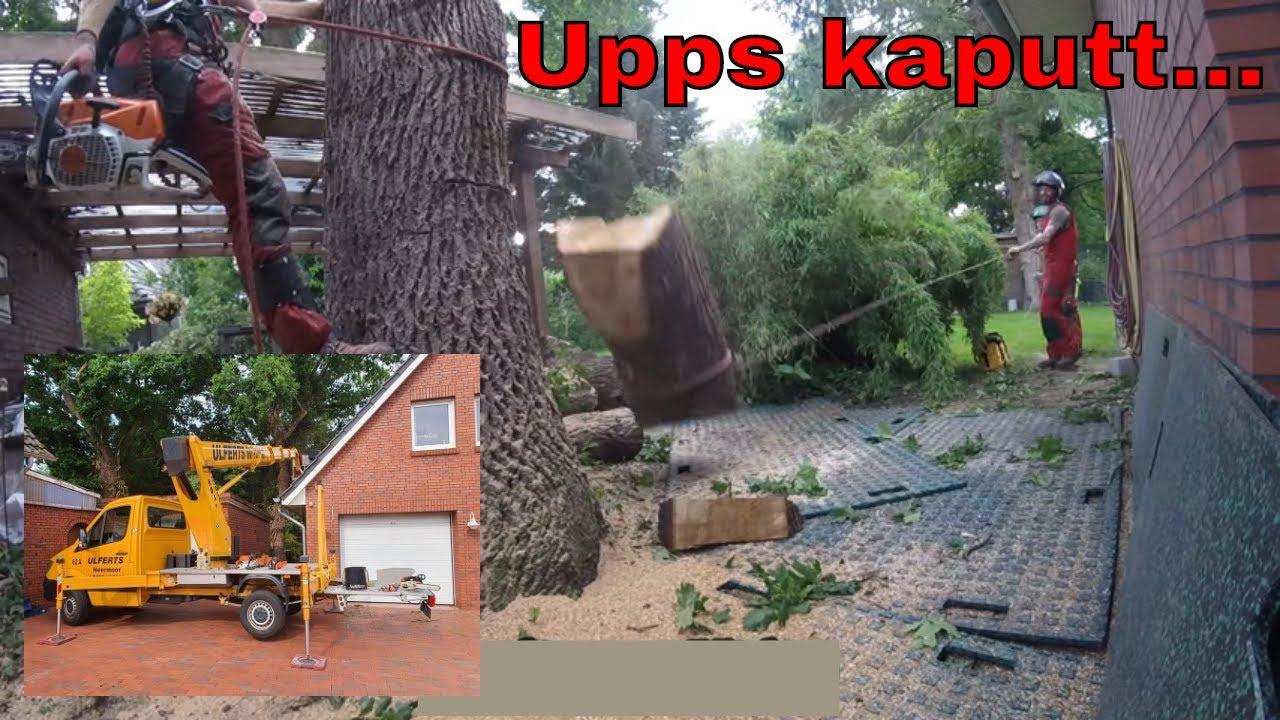 Ups Kaputt.. | Baumpflege Mertens