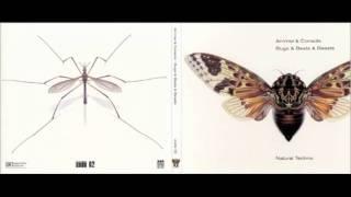 Ammer & Console - Cicadatra {Bugs & Beats & Beasts}