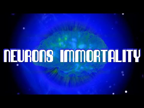 Neurons Immortality Frequency - Future-Channelled Binaural Beat Plus Isochronics