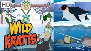 Wild Kratts 🧊⛸️🏔️ Over and Under the Ice ❄ Happy Holidays! ❄ Kids Videos