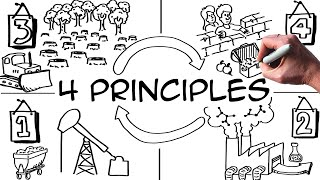 4 Principles to Win the Sustainability
