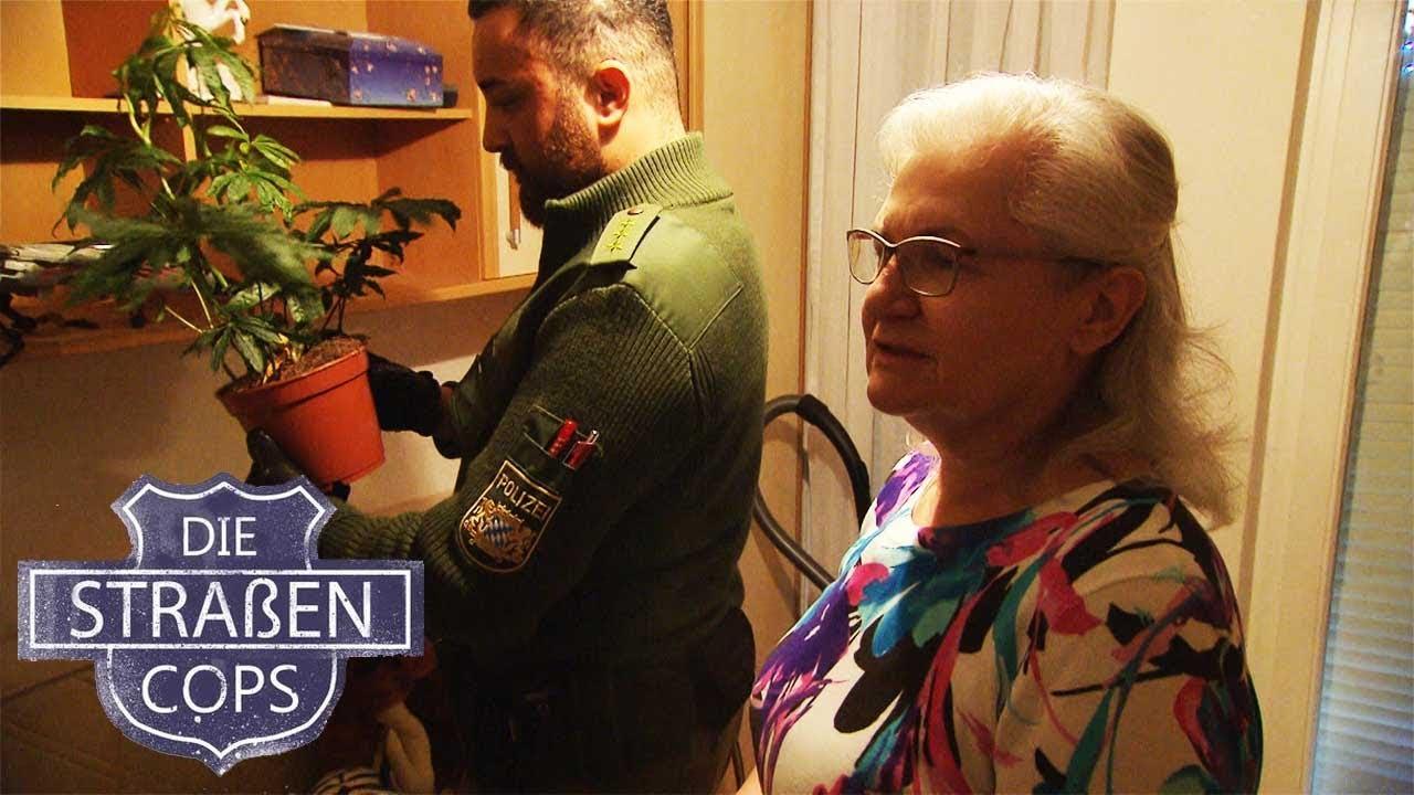 Oma bekommt Graspflanzen bei Einbruch geklaut   Die