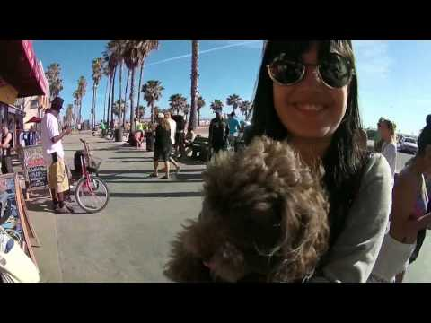Venice Beach Promenade, Los Angeles, California - original audio