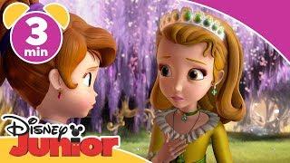 Sofia den Første | Er prinsesse Hanna en heltinde? - Disney Junior Danmark