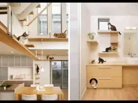 Cat Room Design Ideas apartment design saving space with a suspended bedroom Cat Room Decorating Ideas