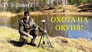 Охота на Окуня! Первая УДАЧНАЯ рыбалка на спиннинг | Ловля окуня на отводной повадок!