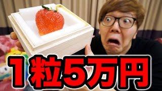 1粒5万円のイチゴを3粒食べて歩く15万円に thumbnail
