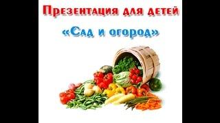 """""""Сад и огород"""", презентация для детей"""