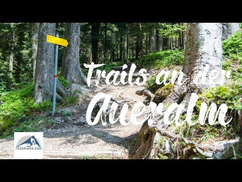 MTB Trail von der Aueralm