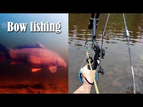 Belwood Lake Conservation Area Bowfishing