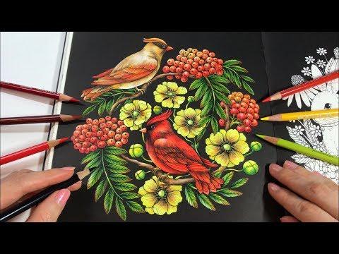 BIRDS & BERRIES COLORING - Cardinal Love Birds | Botanicum Coloring Book