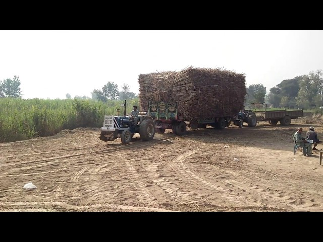 Ford tractor 4600 Malik cane contractor Chiniot Pakistan