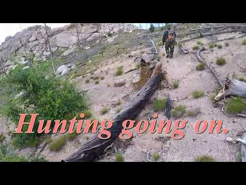 Marmots Hunting  And Cooking 2019