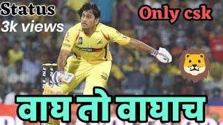 Indian Premium League 2019