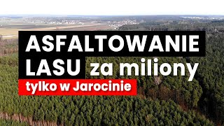 Asfaltowanie lasu za miliony - tak buduje się w Jarocinie.