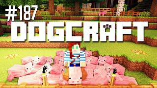 PIG PASTURES - DOGCRAFT (EP.187)