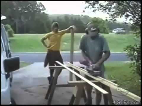 Смешные ролики про животных. – Смотреть видео онлайн в