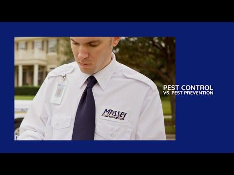 Massey Services:  Pest Control vs Massey's Pest Prevention