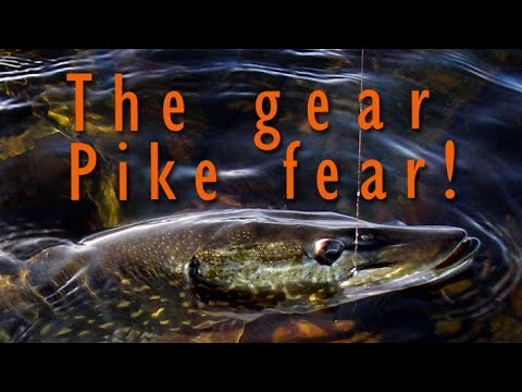 Fly Fishing Gear For Pike!