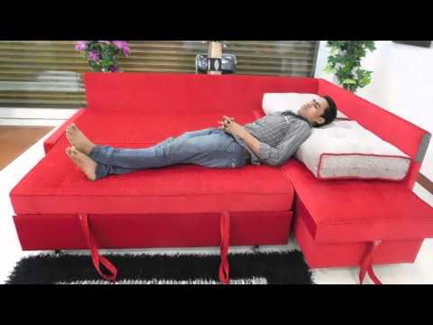 L Shape Sofa Cum Bed A Luxurious International Standard