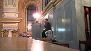 Noc kostelů 2014 Vyškov - Reger - Phantasie D DUR