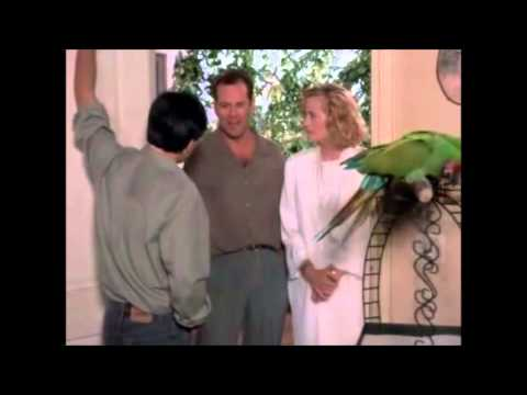 "Cybill Shepherd - Bloopers from ""Moonlighting"""