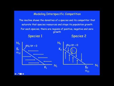 Understanding No Growth Isocline Graphs