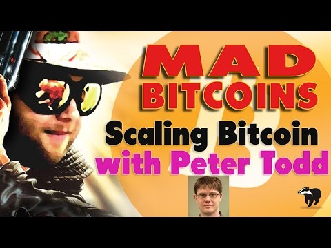 An Interview with Peter Todd about Scaling Bitcoin (Mar 21, 2017)